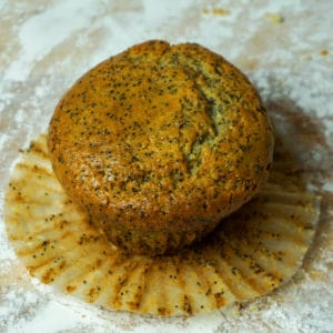 Poppy Muffin